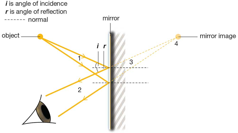 Angle on incidence and angle of reflection